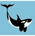 portrait of a killer whale vector image