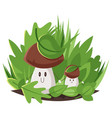 cartoon style of big and small forest mushrooms vector image