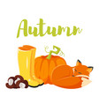 cartoon style autumn background with fox pumpkin vector image