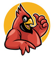 thumb up cardinal vector image