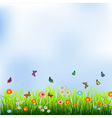 Green grass flowers and butterflies vector image vector image