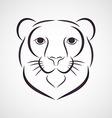 SnowLeopard vector image