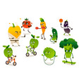 set of funny vegetables doing sport exercises vector image