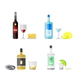 Set of different alcohol drink bottles vector image