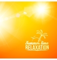 Blurry yellow beautiful summer vector image vector image