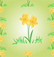 Daffodil Easter flower seamless texture Easter vector image