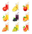 Fruit juice icons set vector image