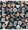 flat dark seamless pattern pedigree cats vector image