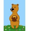 Teddy bear with a honey pot vector image vector image