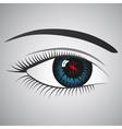 dollars eye vector image vector image