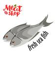 Meat - fresh sea fish icon fresh flat meat vector image