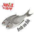Meat - fresh sea fish icon fresh flat meat vector image