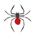 Spider Black Widow vector image
