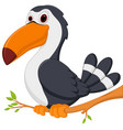 cute toucan bird cartoon sit on tree vector image
