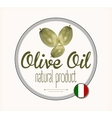 olive oil label Italy vector image