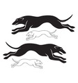 hounds vector image vector image