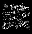 tropical holiday hand written typography vector image