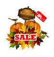 autumn sale concept vector image