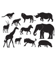 animals of africa vector image vector image