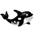 killer whale vector image