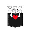 Fox in the pocket holding red heart Cute cartoon vector image