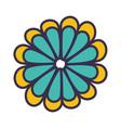 color flower blossom flat vector image