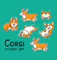 corgi sticker set vector image