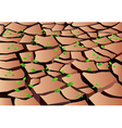 cracked ground vector image
