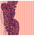 colorful feather border vector image vector image