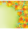 Beautiful autumn background with leaf fall vector image vector image