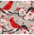 Seamless cardinal and blooming cherry vector image