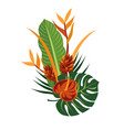 tropical bouquet elegant floral vector image vector image