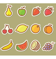 Set with fruits vector image vector image