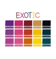 Exotic Color Tone-01 vector image