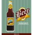 Beer bottle icon Drink and beverage design vector image