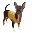Chihuahua Dog 1 vector image