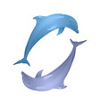 couple of playing dolphins for your creativity vector image