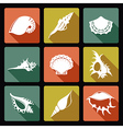 Shell flat icons1 vector image