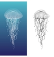Jellyfish1 vector image
