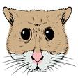 hamster vector image