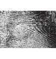 Grainy Wood vector image vector image