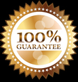 Guarantee seal vector image vector image