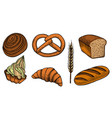 set bread products vector image