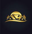 home eco environment gold logo vector image