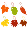 price list leaf vector image vector image