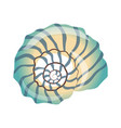 beautiful blue seashell an empty shell of a sea vector image