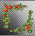 christmas holly branch corner eps 10 vector image