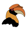 Portrait of Great hornbill on white background vector image