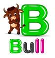 animals alphabet b is for bull vector image