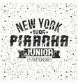 Emblem junior sport team from New York vector image